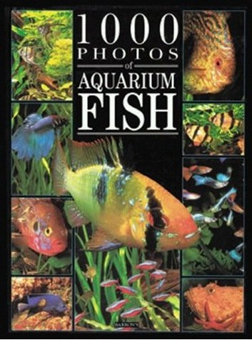 1000 Photos of Aquarium Fish