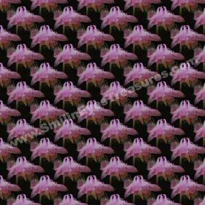 Tiled Pink Columbine Floral Background Digital File