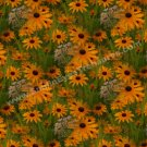 Black Eyed Susan Art Tiled Pattern Floral Background Digital File