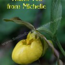 Yellow Lady Slipper Flower Customized Printable Thank You