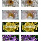 Assorted Flowers No. 1 Printable Gift Tags
