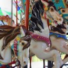 Carousel Horses No. 3 Digital Printable Photo 5x7