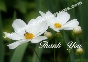 White Cosmos Flowers And Bee Printable Thank You Card