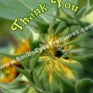 Sunflower Unfolding Flower Printable Thank You Card