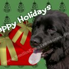 Newfoundland Dog Printable Christmas Holiday Card