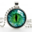 Cats Eye Necklace - Photo Pendant - Silver Glass Pendant - Picture Jewelry - Prismatic Green Eye Art