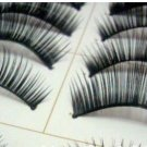 10 Pair Thick Long False Eyelashes
