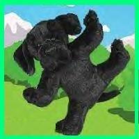 Webkinz BLACK LAB Webkins RARE HTF New!!