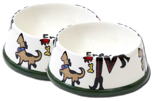 Sassy Hand Painted Large Persoanalized Dog Bowl