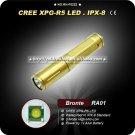 Bronte RA01 Gold R5 80LM 3-Mode LED White Light Flashlight (1 x AAA) Mini Camping Hiking Torch