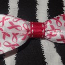Simply Cute Pink Ribbon Breast Cancer Awareness 3 x 1 inch Hair Bow Clip ~ Free Shipping