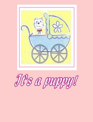 It's a Puppy in a Carriage Pink