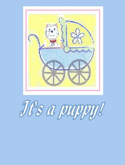 It's a Puppy in a Carriage Blue