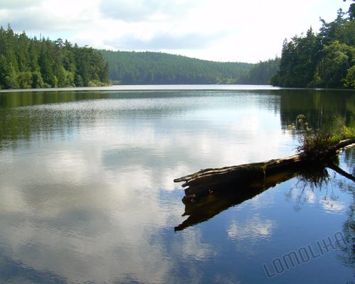 Pass Lake 1 - 8x10 - Original Fine Art Photograph - FREE SHIPPING