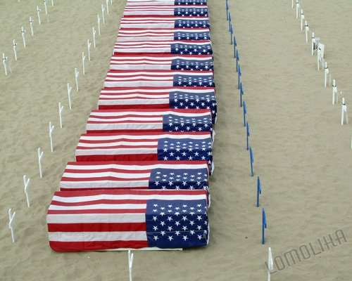 Fallen - ARLINGTON WEST MEMORIAL Santa Monica, CA - 8x10 - Original Photograph - Free Shipping