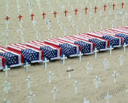 Fallen Soldiers - ARLINGTON WEST MEMORIAL Santa Monica, CA 8x10 Original Photograph Free Shipping