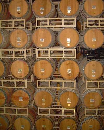 Wine Barrels - 8x10 - Original Fine Art Photograph - FREE SHIPPING