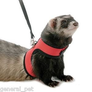 Super Pet Medium Comfort Harness Assorted Colors