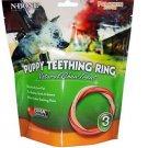 N-Bone Puppy Teething Ring Natural Chew Treat-Pumpkin Flavor 3 pack