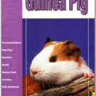 The Guide to Owning a Guinea Pig