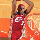2009 Upper Deck Basketball Card #28 LeBron James