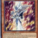 Yugioh Duelist Pack Rivals of the Pharaoh Silent Magician LV8 DPRP-EN020
