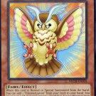 Yugioh Duelist New Challengers, Fluffal Owl NECH-EN018