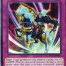 Yugioh Duelist New Challengers, The Phantom Knights of Shadow Veil NECH-EN072