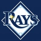 2008 Upper Deck First Edition Tampa Bay Rays Baseball Cards Team Set