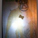 Bulldog Magnetic Board, Price Includes S&H
