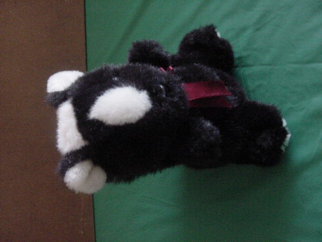 "DGE Corp Skunk Black & White Stuffed Plush Beanie 7"""