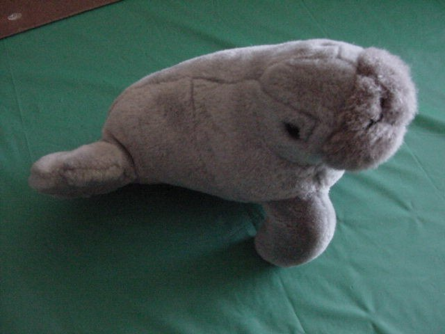 "Princess Soft Toys Sea Lion Walrus? Stuffed Plush 9"""