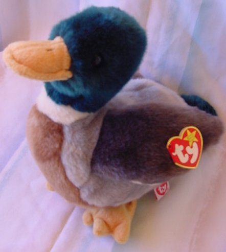 TY Beanie Buddy Jake Mallard Duck Plush Tag 8""
