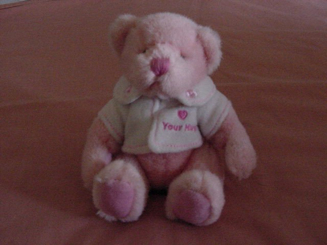 Russ Warm Wish Bear Pink Love Hugs Stuffed Plush 5""