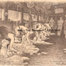 *Shearing Sheep*  8X10 Photo