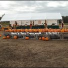 *Outside Pumpkin Store*   8X10 Color Photo