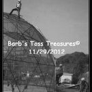 *Dome Project* 8X10 Black & White Photo