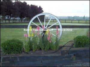 *Retired Wheel* 8X10 Color Photo
