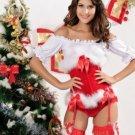 Mrs Santa Corset Costume