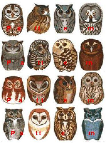 Collection of owls. Cross Stitch Pattern. PDF Files.