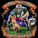 Miami Dolphins Mascot. Cross Stitch Pattern. PDF Files.