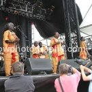 "Sierra Leone Refugee All Stars 8""x10"" Concert Photo"