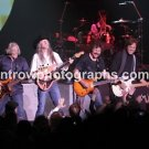 "The Doobie Brothers 8""x10"" Color Concert Photo"