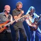 """Deep Purple 8""""x10"""" Color Concert Photo"""