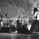 "Phil Lesh & Friends Band 8""x10"" BW Concert Photo"