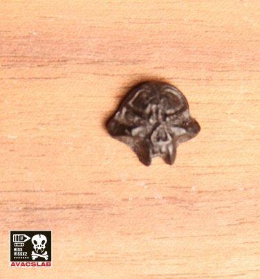 Small Armor Adornment (1 ) Piece Black