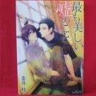 Mottomo Utsukushii Uso no Koto YAOI Manga Japanese / Kei Kanai