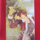 Your Love Can Not Be Easily Visible Kimi no Ai wa Mienikui YAOI Manga Japanese / Rie Honjyo