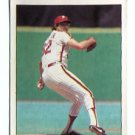STEVE CARLTON 1982 Topps Sticker #206 Philadelphia Phillies