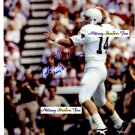 TODD BLACKLEDGE Penn State Nittany Lions QB 1980-82  -  8x10 AUTO Autograph STEELERS KC Chiefs